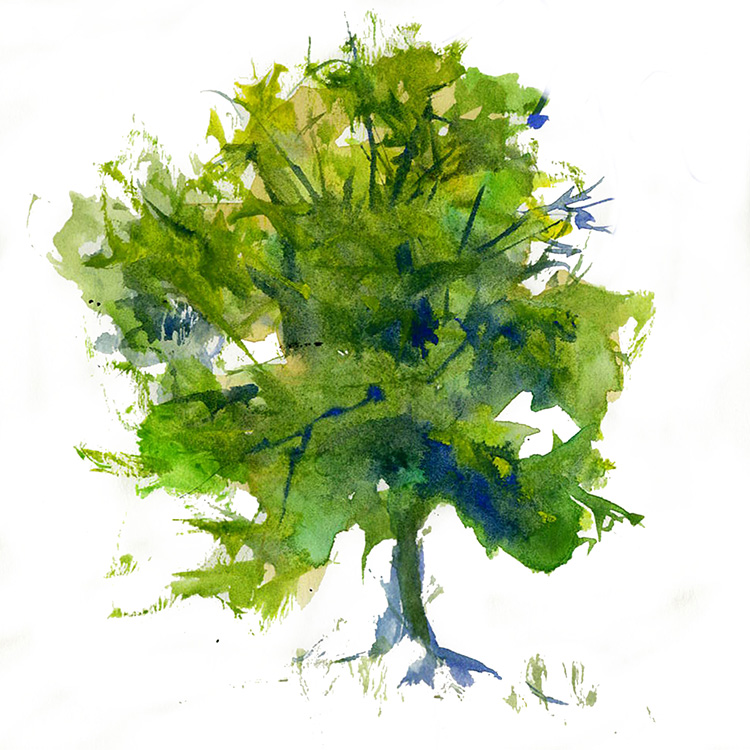 Image gallery watercolor trees for How to paint a tree